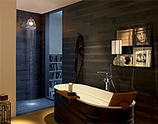 Bathroom/living space with an LED lamp that is also an overhead shower.