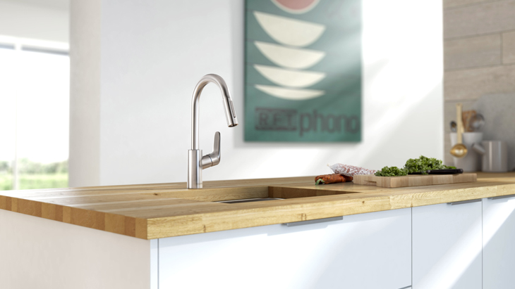 focus kitchen faucet features a slender pullout sprayhead