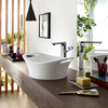 Axor Urquiola wash bowl and mixer.