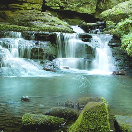 wasserfall hansgrohe wasserspartipps - Hansgrohe Wasserfall Dusche
