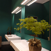 The blue/green of this wall in the bathroom is complemented by the delicate green of the decorative plants. As seen at Teuco.