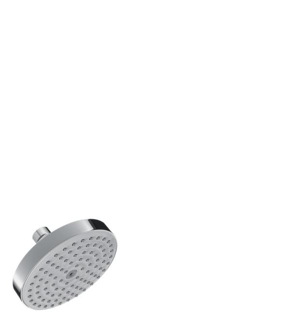 hansgrohe Showerheads: Raindance, 1 spray mode, 04342000