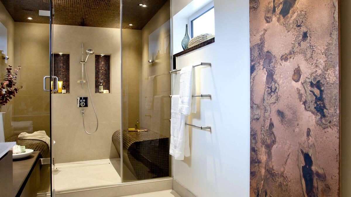 配有大花洒和优雅淋浴设备的高贵浴室。
