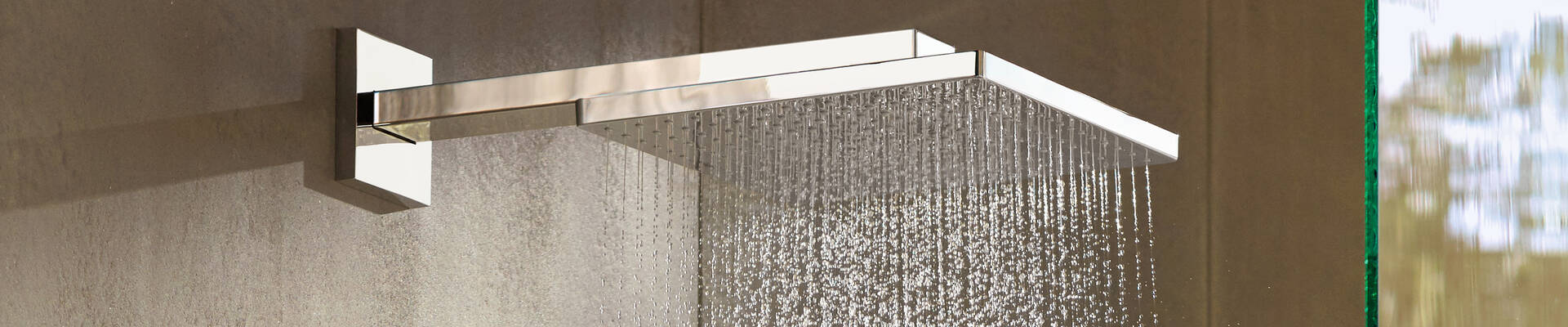 Hansgrohe Shower Head With Xl Rain