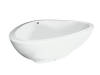 Bath tub 1,900/1,500