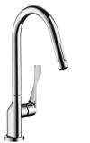 Single lever kitchen mixer 250 with pull-out spray